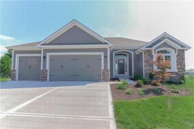 Kearney Single Family Home For Sale: 103 S Prairie Court