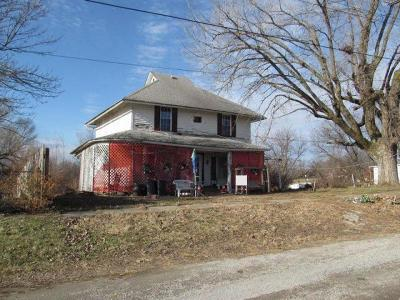 Worth County Single Family Home For Sale: 207 N High Street