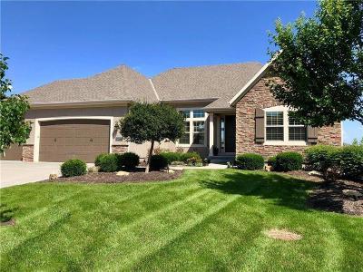 Overland Park Single Family Home For Sale: 16025 Caenen Street