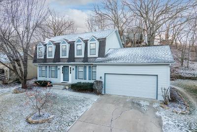 Overland Park Single Family Home For Sale: 11449 Mastin Street