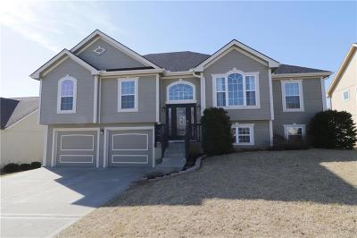 Smithville Single Family Home For Sale: 208 Porter Drive
