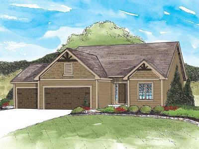 Lee's Summit MO Single Family Home Pending: $329,525