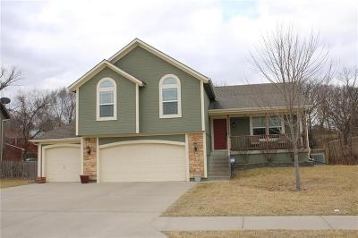 Kansas City Single Family Home Show For Backups: 4819 Shearer Court