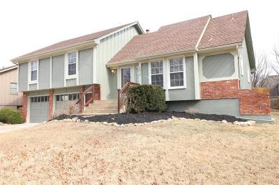 Raintree Lake, Raintree Lake Estates, Raintree Lake- The North Shore, Raintree Villas Single Family Home For Sale: 4075 SW Lido Drive