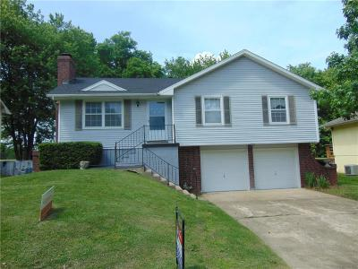 Henry County Single Family Home For Sale: 303 Christopher Drive