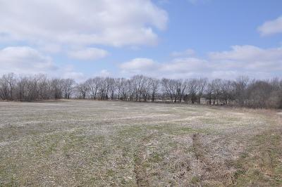 Lone Jack Residential Lots & Land For Sale: 22 M/L Acres