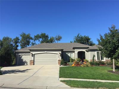 Olathe Single Family Home For Sale: 21044 W 113th Place