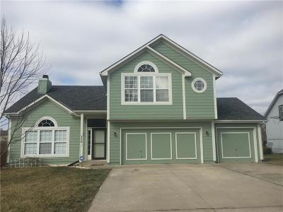 Raymore MO Single Family Home For Sale: $262,000