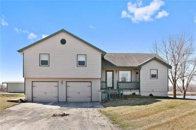 Cass County Single Family Home For Sale: 30300 S Hess Road