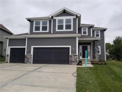 Olathe Single Family Home For Sale: 19732 W 121st Street
