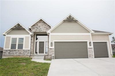 Olathe Single Family Home For Sale: 16563 S Loiret Street