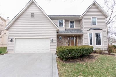 Olathe Single Family Home For Sale: 13616 Sycamore Street