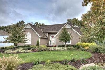 Parkville Single Family Home For Sale: 8324 Lakeview Drive