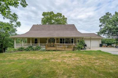Clinton County Single Family Home For Sale: 7196 SE Snow Drive