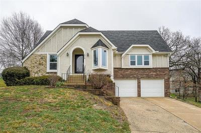 Lee's Summit MO Single Family Home For Sale: $269,900