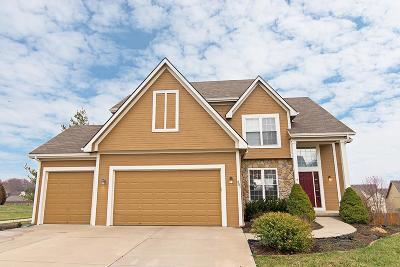 Lansing Single Family Home For Sale: 801 Southfork Street
