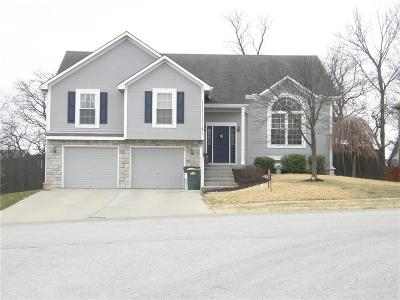 Lansing Single Family Home For Sale: 361 Ash Lane