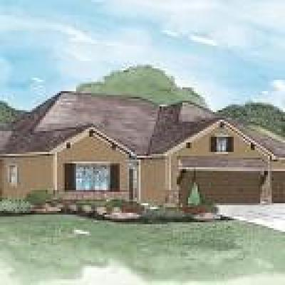 Lee's Summit MO Single Family Home For Sale: $373,550