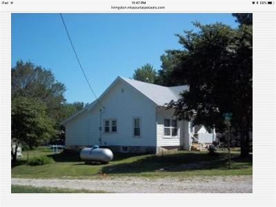 Livingston County Single Family Home For Sale: 310 N Lincoln Street