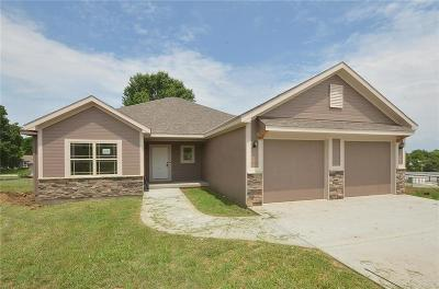 Platte City Single Family Home For Sale: 308 Fairview Circle