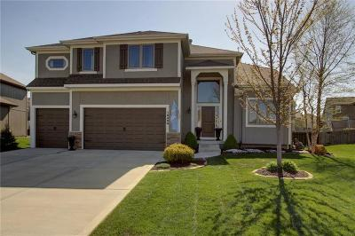 Olathe Single Family Home For Sale: 16489 W 165th Street