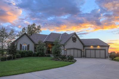 Johnson-KS County Single Family Home For Sale: 3490 W 196th Street