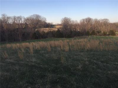 Platte County Residential Lots & Land For Sale: Lot 2 371 Highway