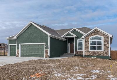 Basehor Single Family Home For Sale: 14173 Rockaway Court