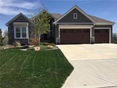 Olathe Single Family Home For Sale: 20569 W 113 Street