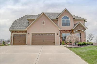 Smithville Single Family Home For Sale: 703 Indian Trail Court