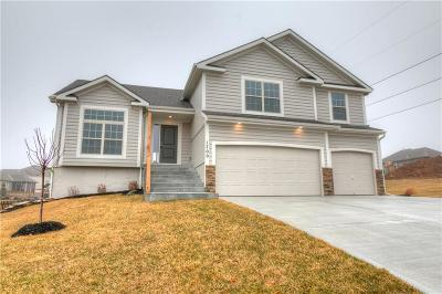 Single Family Home For Sale: 1701 NE 94th Street