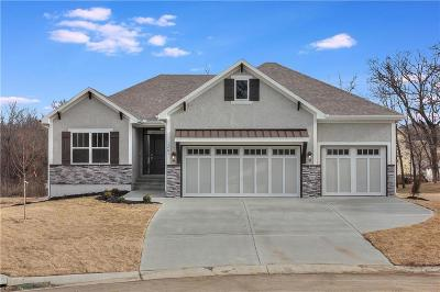 Blue Springs Single Family Home Contingent: 849 SE Hillside Circle