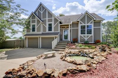 Lansing Single Family Home For Sale: 722 Bittersweet Road