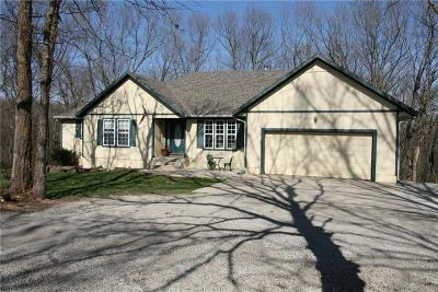 Spring Hill Single Family Home Show For Backups: 21201 Clare Road