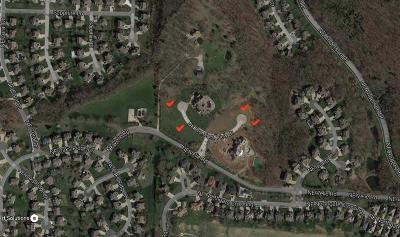 Lee's Summit Residential Lots & Land For Sale: 521 NE Promised View Drive