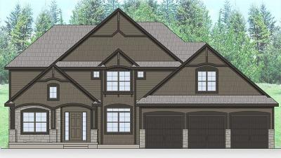 Lee's Summit MO Single Family Home Pending: $553,350