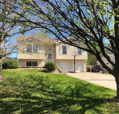 Lansing Single Family Home For Sale: 103 E Mary Street