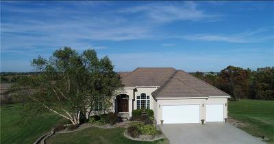 Dekalb County Single Family Home For Sale: 949 SW Davis Road
