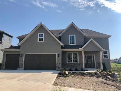 Kansas City Single Family Home For Sale: 9701 Apple Blossom Lane