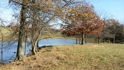 Bates County Residential Lots & Land For Sale: SW Road 1067 Road