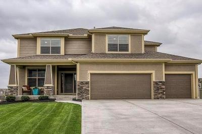 Olathe Single Family Home For Sale: 2573 W Dartmouth Street