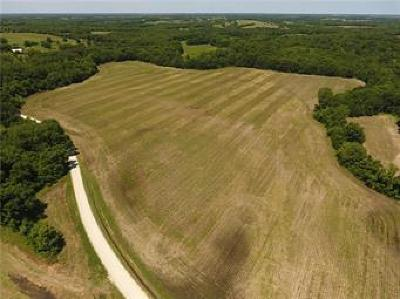 Cass County Residential Lots & Land For Sale: E 331st Street