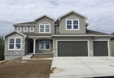 Lenexa Single Family Home For Sale: 24514 W 79th Terrace