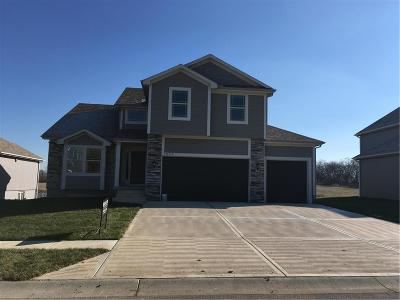 Greenwood MO Single Family Home For Sale: $315,000