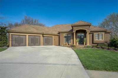 Kansas City Single Family Home For Sale: 10132 N Bradford Avenue