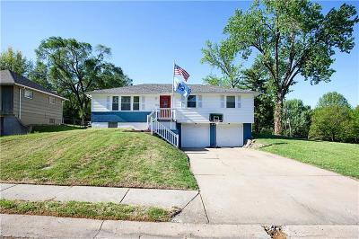 Raytown Single Family Home For Sale: 9616 E 86th Terrace