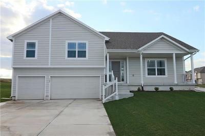 Belton Single Family Home For Sale: 700 Emily Avenue