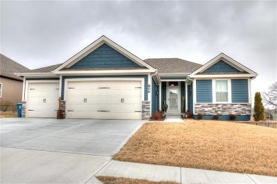 Kearney Single Family Home For Sale: 806 E 13th Terrace