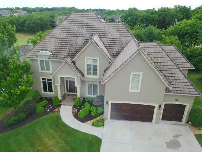 Lenexa Single Family Home For Sale: 20301 W 92nd Street