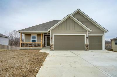 Smithville Single Family Home For Sale: 104 Creek Valley Terrace